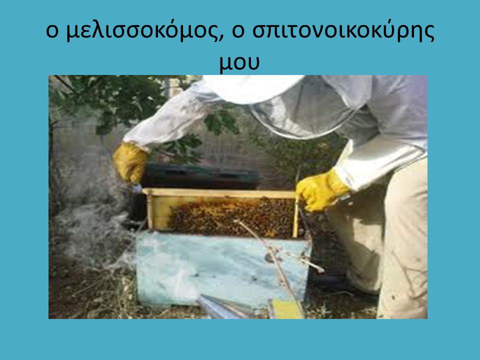 ο μελισσοκόμος, ο σπιτονοικοκύρης μου