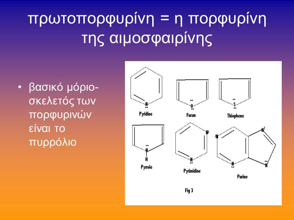 προϊόντα καταβολισμού: βασικά η χολερυθρίνη («τετρα-πυρρόλη») και δι-πυρρόλες («μεσοχολοφουσκίνη») η κατεύθυνση προς την μία ή την άλλη μορφή είναι συνάρτηση της φυσικοχημικής μορφής της Ηβ την στιγμή του καταβολισμού της (π.χ.