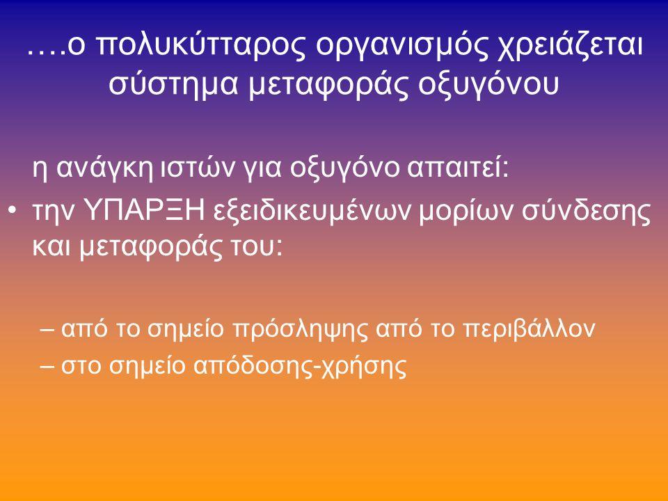 ερυθροηπατική πρωτοπορφυρία (3/5)