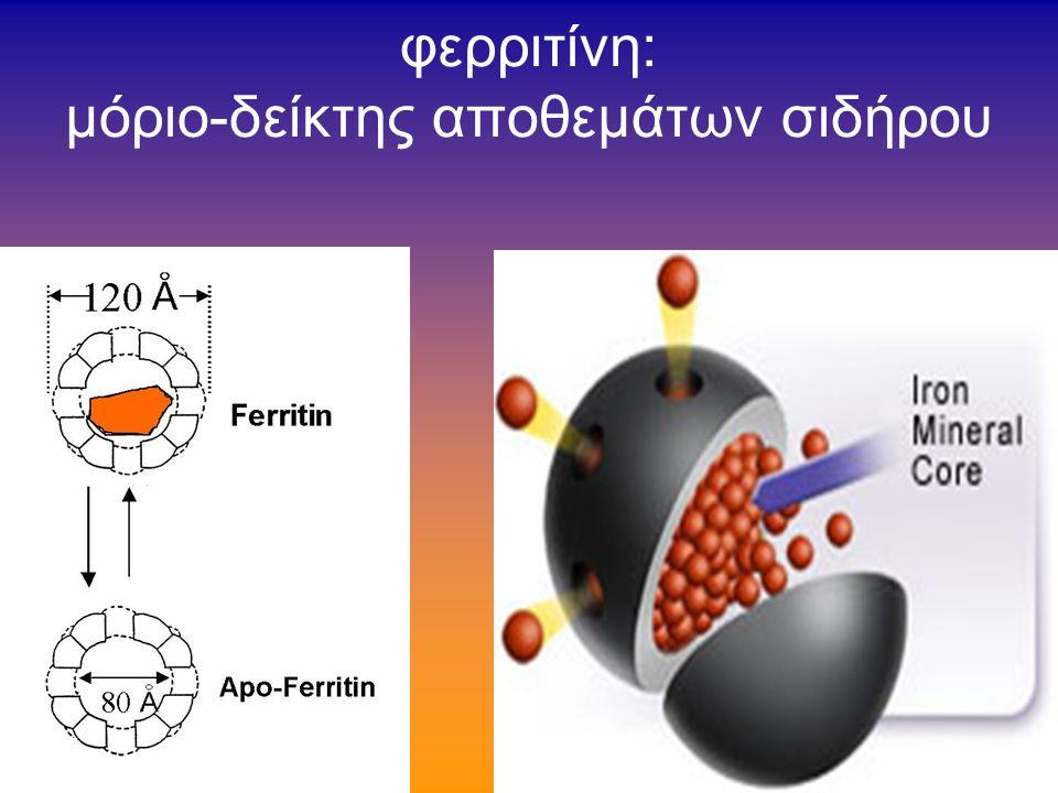«κυτταρολογική χρώση σιδήρου»= =χρώση αιμοσιδηρίνης ( αιμοσιδηρίνη=φερριτίνη κατακριμνησθείσα) η μορφολογία ( pattern ) κατανομής της χρώσεως είναι πολλές φορές ειδική