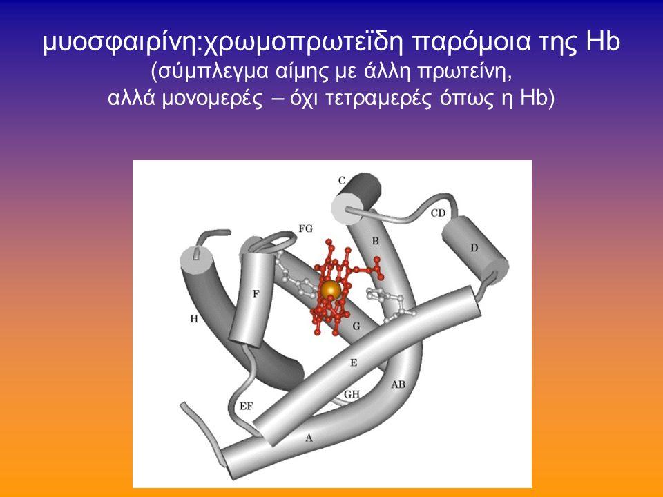συγγενείς δυσερυθροποιητικές αναιμίες (3/3) Θεραπεία συνήθως δεν χρειάζονται μεταγγίσεις αν συχνές oι μεταγγίσεις →απαιτούν αποσιδήρωση οι ανάγκες ενίοτε μειώνονται μετά σπληνεκτομή υπάρχουν λίγες περιπτώσεις Τύπου Ι που απαντούν στην ιντερφερόνη