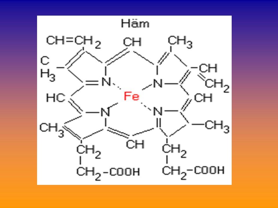 μυοσφαιρίνη:χρωμοπρωτεϊδη παρόμοια της Hb (σύμπλεγμα αίμης με άλλη πρωτείνη, αλλά μονομερές – όχι τετραμερές όπως η Ηb)