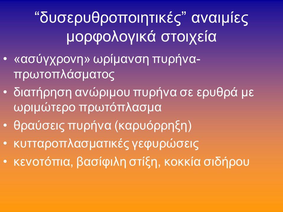 δυσερυθροποιητικές αναιμίες πρόκειται γιά φαινόμενο- «κοινό παρανομαστή» πολλών διαταραχών, που συνδέεται με πολλές και ετερόκλητες καταστάσεις που ΔΕΝ έχουν πολλά κοινά στοιχεία ώστε να ενταχθούν σε ενιαία ομάδα ΟΜΩΣ: χρήσιμη παθογενετική έννοια που διασυνδέει («οριζόντια») την ερυθροποίηση και τις διαταραχές της