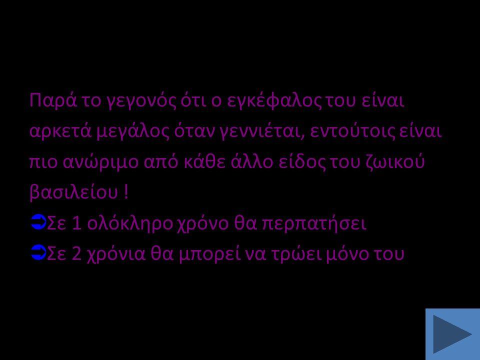 ΤΑ ΣΠΟΥΔΑΙΟΤΕΡΑ ΑΝΤΑΝΑΚΛΑΣΤΙΚΑ 4.