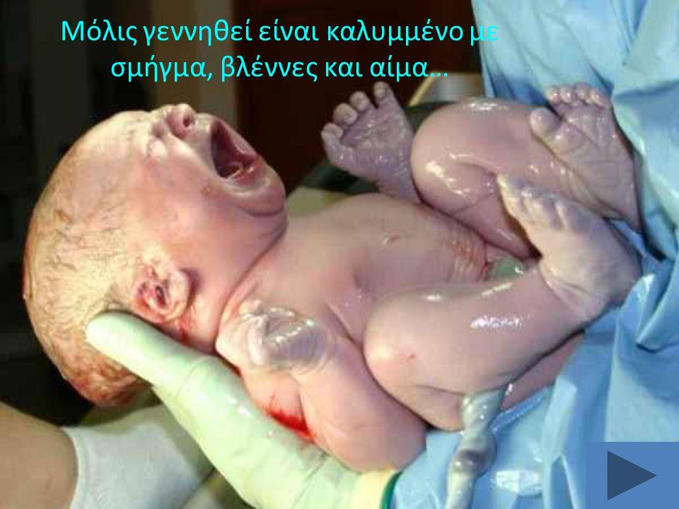 Τα φυσιολογικά χαρακτηριστικά του νεογέννητου είναι: 5.
