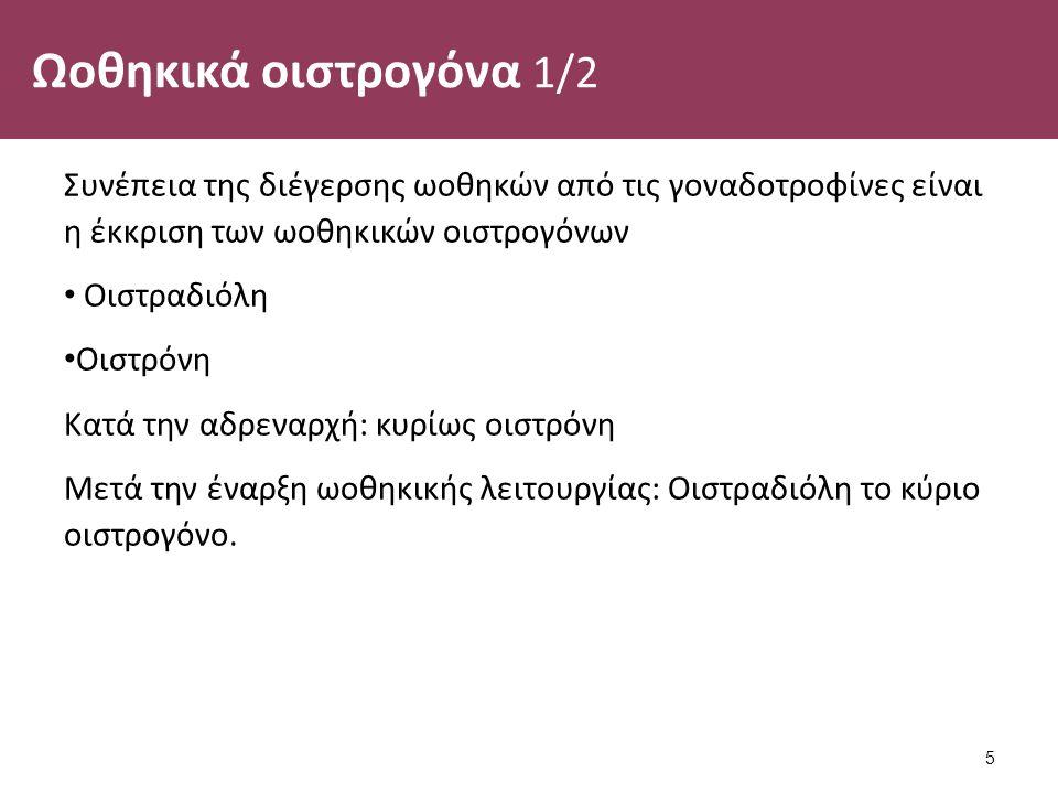 Ωοθηκικά οιστρογόνα 1/2 Συνέπεια της διέγερσης ωοθηκών από τις γοναδοτροφίνες είναι η έκκριση των ωοθηκικών οιστρογόνων Οιστραδιόλη Οιστρόνη Κατά την αδρεναρχή: κυρίως οιστρόνη Μετά την έναρξη ωοθηκικής λειτουργίας: Οιστραδιόλη το κύριο οιστρογόνο.