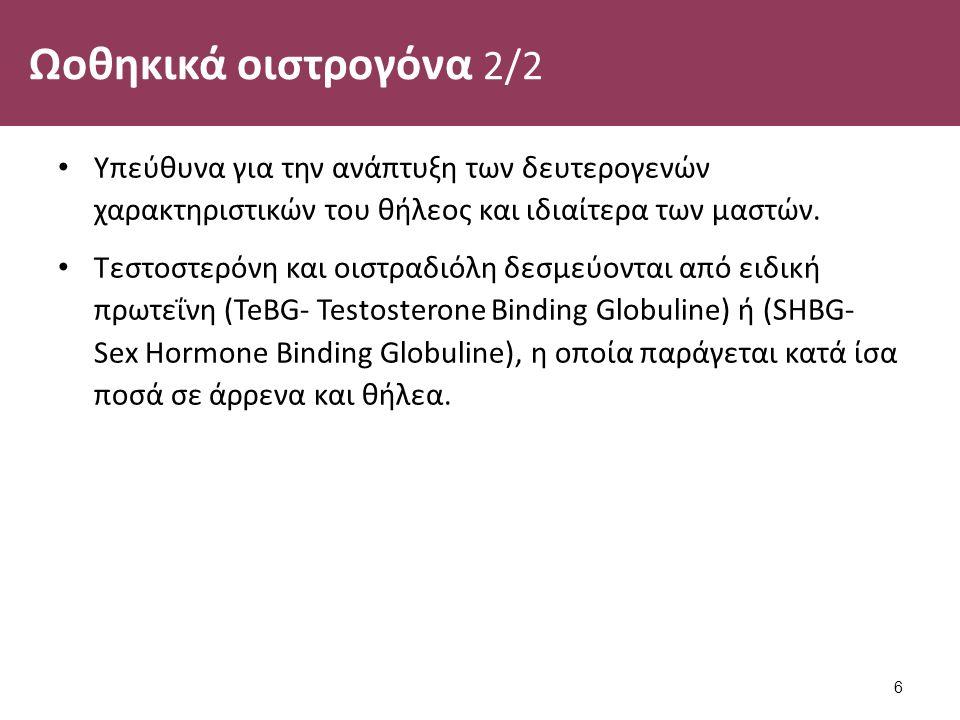 Ωοθηκικά οιστρογόνα 2/2 Υπεύθυνα για την ανάπτυξη των δευτερογενών χαρακτηριστικών του θήλεος και ιδιαίτερα των μαστών. Τεστοστερόνη και οιστραδιόλη δ