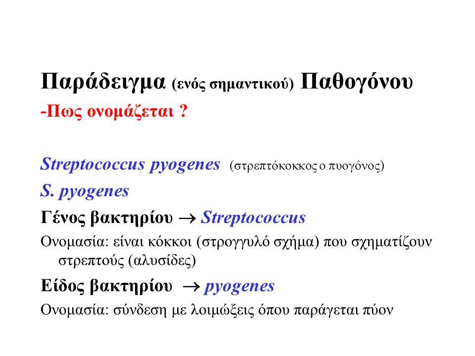 Παράδειγμα (ενός σημαντικού) Παθογόνου -Πως ονομάζεται ? Streptococcus pyogenes (στρεπτόκοκκος ο πυογόνος) S. pyogenes Γένος βακτηρίου  Streptococcus