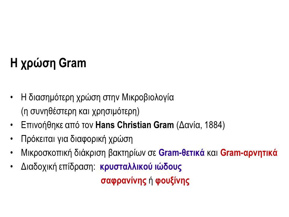 Η χρώση Gram H διασημότερη χρώση στην Μικροβιολογία (η συνηθέστερη και χρησιμότερη) Επινοήθηκε από τον Hans Christian Gram (Δανία, 1884) Πρόκειται για