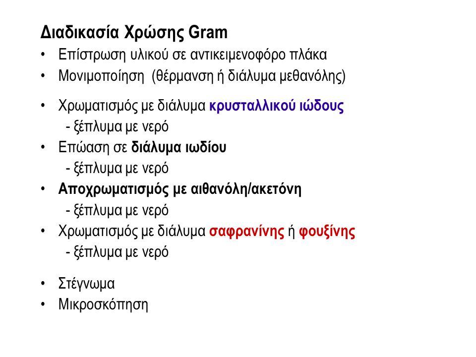 Διαδικασία Χρώσης Gram Επίστρωση υλικού σε αντικειμενοφόρο πλάκα Μονιμοποίηση (θέρμανση ή διάλυμα μεθανόλης) Χρωματισμός με διάλυμα κρυσταλλικού ιώδου