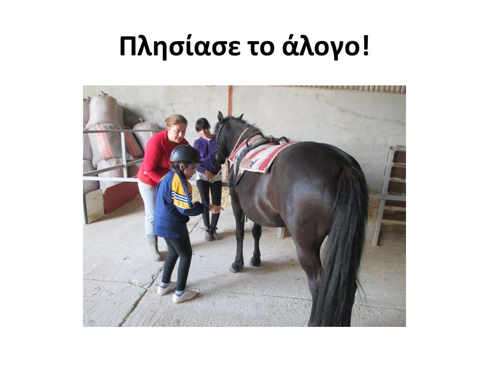 Πλησίασε το άλογο!