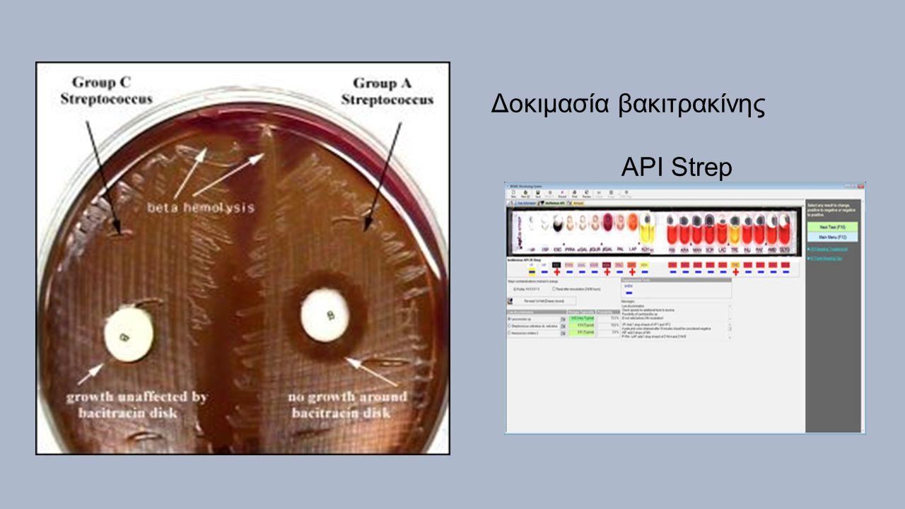 Δοκιμασία βακιτρακίνης API Strep