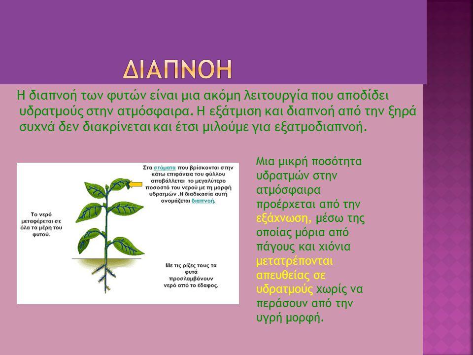 Η διαπνοή των φυτών είναι μια ακόμη λειτουργία που αποδίδει υδρατμούς στην ατμόσφαιρα. Η εξάτμιση και διαπνοή από την ξηρά συχνά δεν διακρίνεται και έ