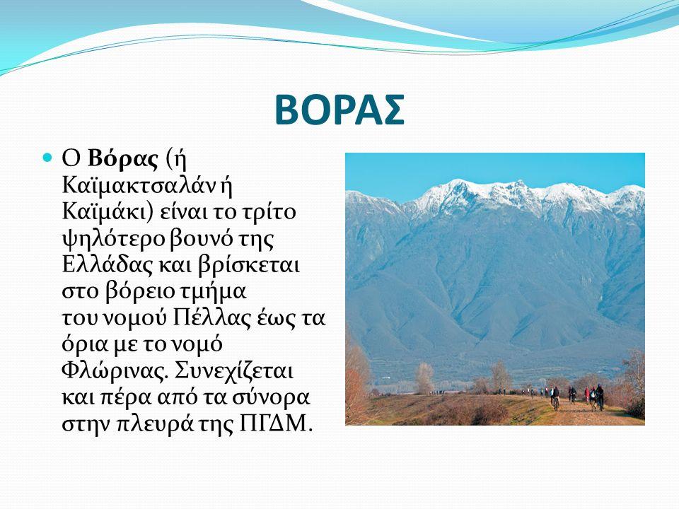 ΒΟΡΑΣ Ο Βόρας (ή Καϊμακτσαλάν ή Καϊμάκι) είναι το τρίτο ψηλότερο βουνό της Ελλάδας και βρίσκεται στο βόρειο τμήμα του νομού Πέλλας έως τα όρια με το ν