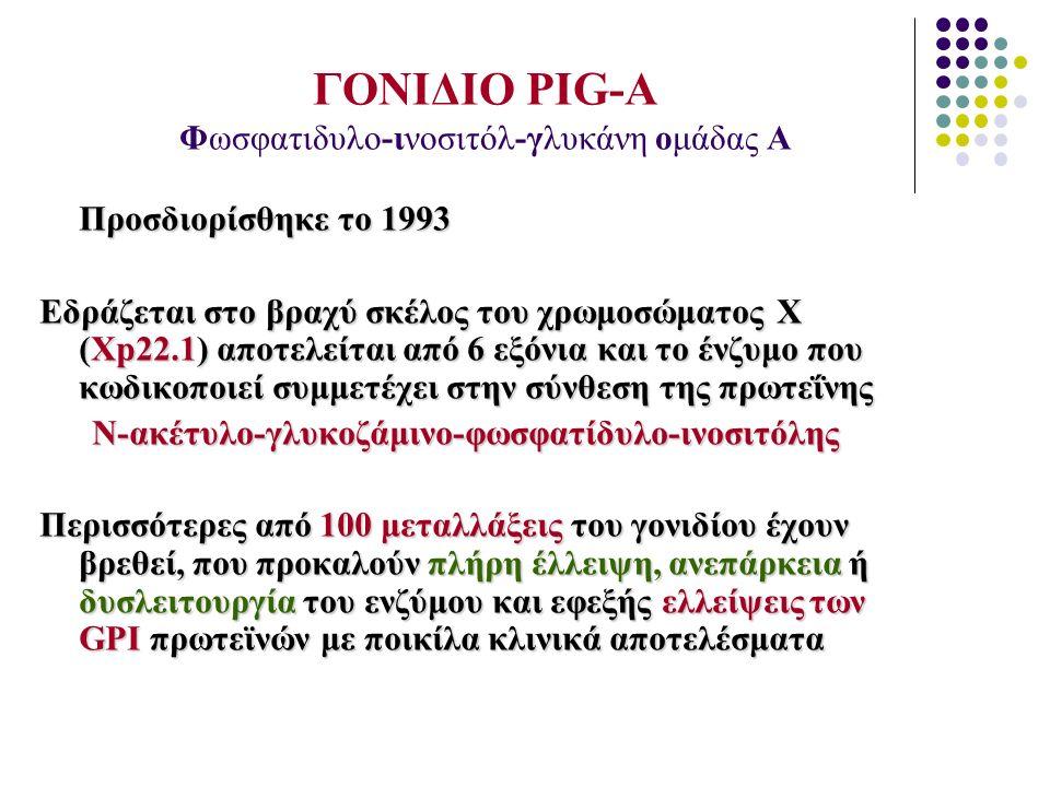 ΓΟΝΙΔΙΟ PIG-A Φωσφατιδυλο-ινοσιτόλ-γλυκάνη ομάδας Α Προσδιορίσθηκε το 1993 Εδράζεται στο βραχύ σκέλος του χρωμοσώματος Χ (Χp22.1) αποτελείται από 6 εξ