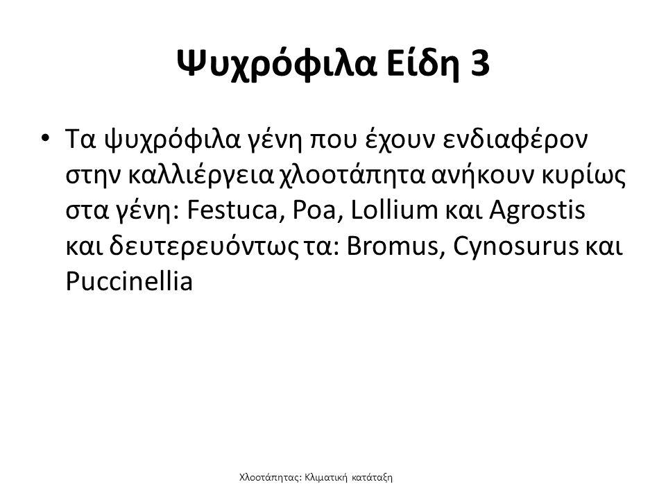 Χλοοτάπητας: Κλιματική κατάταξη Ψυχρόφιλα Είδη 3 Τα ψυχρόφιλα γένη που έχουν ενδιαφέρον στην καλλιέργεια χλοοτάπητα ανήκουν κυρίως στα γένη: Festuca, Poa, Lollium και Agrostis και δευτερευόντως τα: Bromus, Cynosurus και Puccinellia