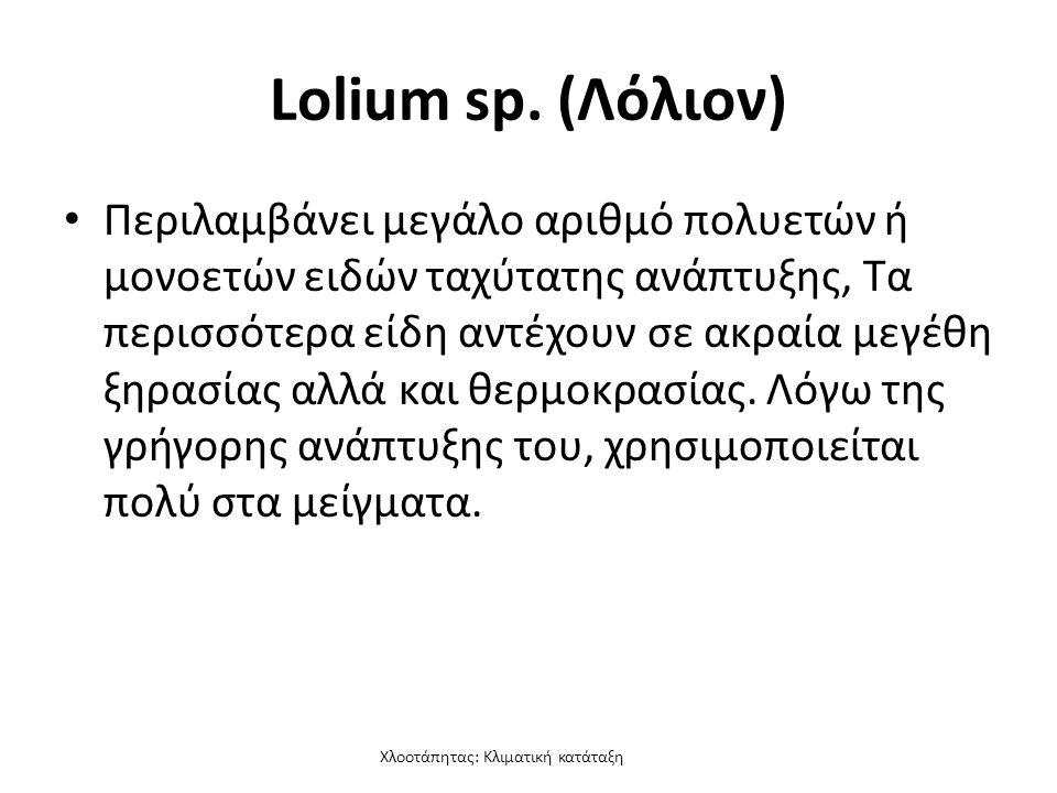 Χλοοτάπητας: Κλιματική κατάταξη Lolium sp.