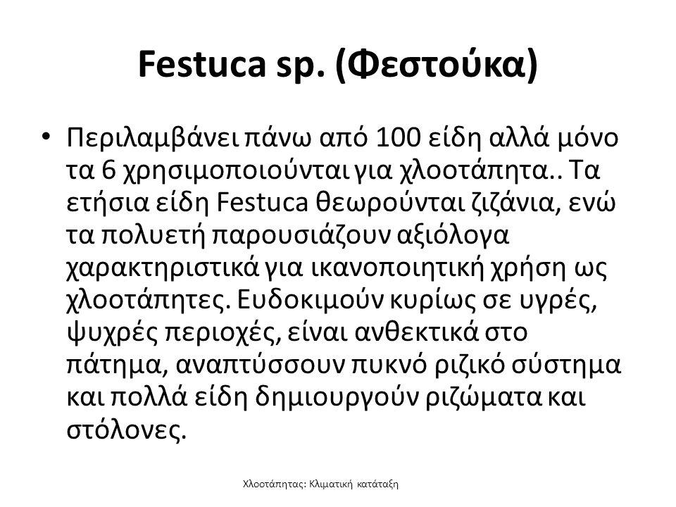Χλοοτάπητας: Κλιματική κατάταξη Festuca sp.