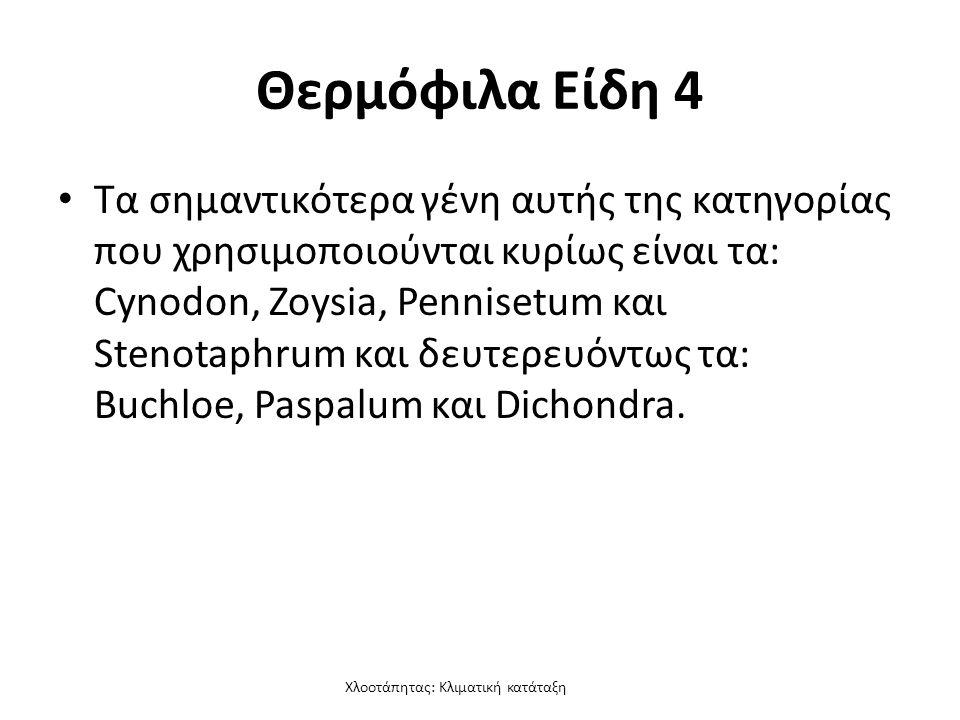 Χλοοτάπητας: Κλιματική κατάταξη Θερμόφιλα Είδη 4 Τα σημαντικότερα γένη αυτής της κατηγορίας που χρησιμοποιούνται κυρίως είναι τα: Cynodon, Zoysia, Pennisetum και Stenotaphrum και δευτερευόντως τα: Buchloe, Paspalum και Dichondra.