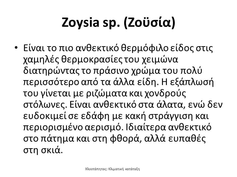 Χλοοτάπητας: Κλιματική κατάταξη Zoysia sp.