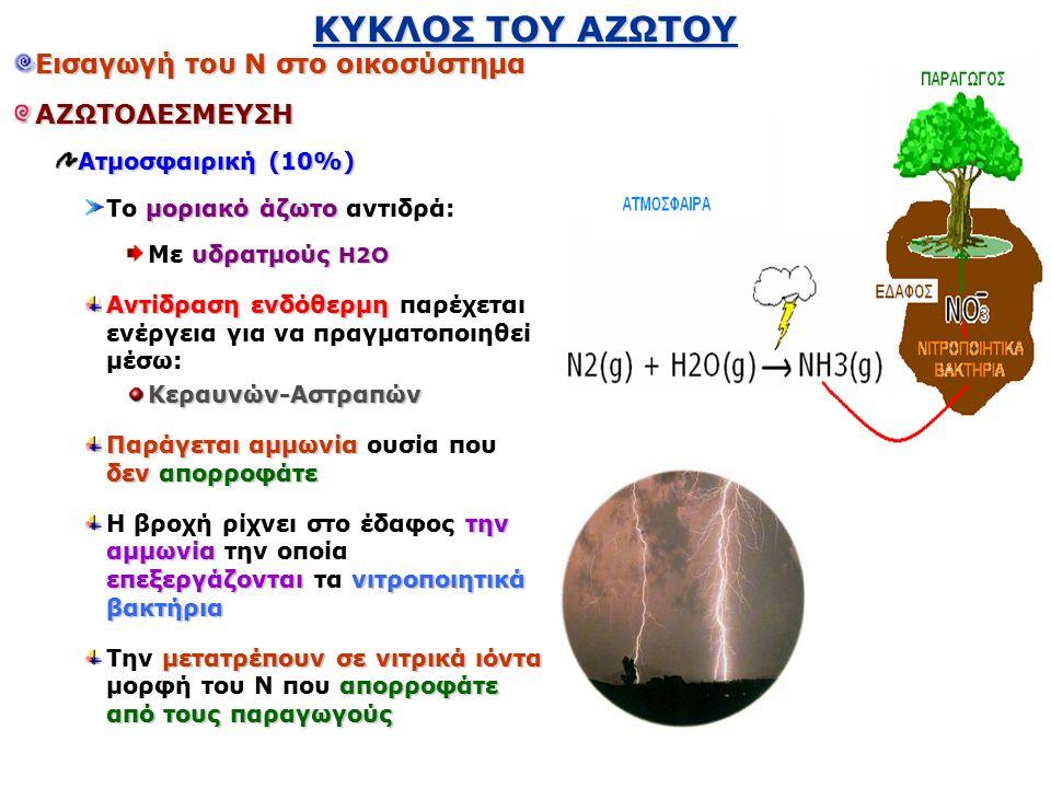 ΚΥΚΛΟΣ ΤΟΥ ΑΖΩΤΟΥ Εισαγωγή του Ν στο οικοσύστημα ΑΖΩΤΟΔΕΣΜΕΥΣΗ Ατμοσφαιρική (10%) μοριακό άζωτο Το μοριακό άζωτο αντιδρά: υδρατμούς Η2Ο Mε υδρατμούς Η2Ο Αντίδραση ενδόθερμη Αντίδραση ενδόθερμη παρέχεται ενέργεια για να πραγματοποιηθεί μέσω:Κεραυνών-Αστραπών Παράγεται αμμωνία δεν απορροφάτε Παράγεται αμμωνία ουσία που δεν απορροφάτε την αμμωνία επεξεργάζονταινιτροποιητικά βακτήρια Η βροχή ρίχνει στο έδαφος την αμμωνία την οποία επεξεργάζονται τα νιτροποιητικά βακτήρια μετατρέπουν σε νιτρικά ιόντα απορροφάτε από τους παραγωγούς Την μετατρέπουν σε νιτρικά ιόντα μορφή του Ν που απορροφάτε από τους παραγωγούς