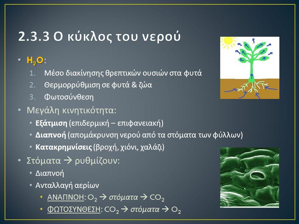 H 2 O H 2 O: 1.Μέσο διακίνησης θρεπτικών ουσιών στα φυτά 2.Θερμορρύθμιση σε φυτά & ζώα 3.Φωτοσύνθεση Μεγάλη κινητικότητα : Εξάτμιση ( επιδερμική – επιφανειακή ) Διαπνοή ( απομάκρυνση νερού από τα στόματα των φύλλων ) Κατακρημνίσεις ( βροχή, χιόνι, χαλάζι ) Στόματα  ρυθμίζουν : Διαπνοή Ανταλλαγή αερίων ΑΝΑΠΝΟΗ : O 2  στόματα  CO 2 ΦΩΤΟΣΥΝΘΕΣΗ : CO 2  στόματα  O 2