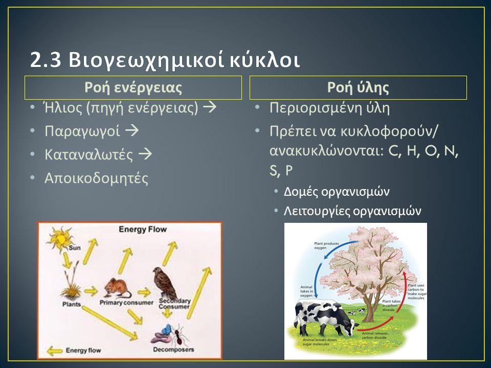 Ροή ενέργειας Ήλιος ( πηγή ενέργειας )  Παραγωγοί  Καταναλωτές  Αποικοδομητές Ροή ύλης Περιορισμένη ύλη Πρέπει να κυκλοφορούν / ανακυκλώνονται : C, H, O, N, S, P Δομές οργανισμών Λειτουργίες οργανισμών