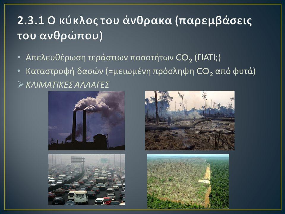 Απελευθέρωση τεράστιων ποσοτήτων CO 2 ( ΓΙΑΤΙ ;) Καταστροφή δασών (= μειωμένη πρόσληψη CO 2 από φυτά )  ΚΛΙΜΑΤΙΚΕΣ ΑΛΛΑΓΕΣ