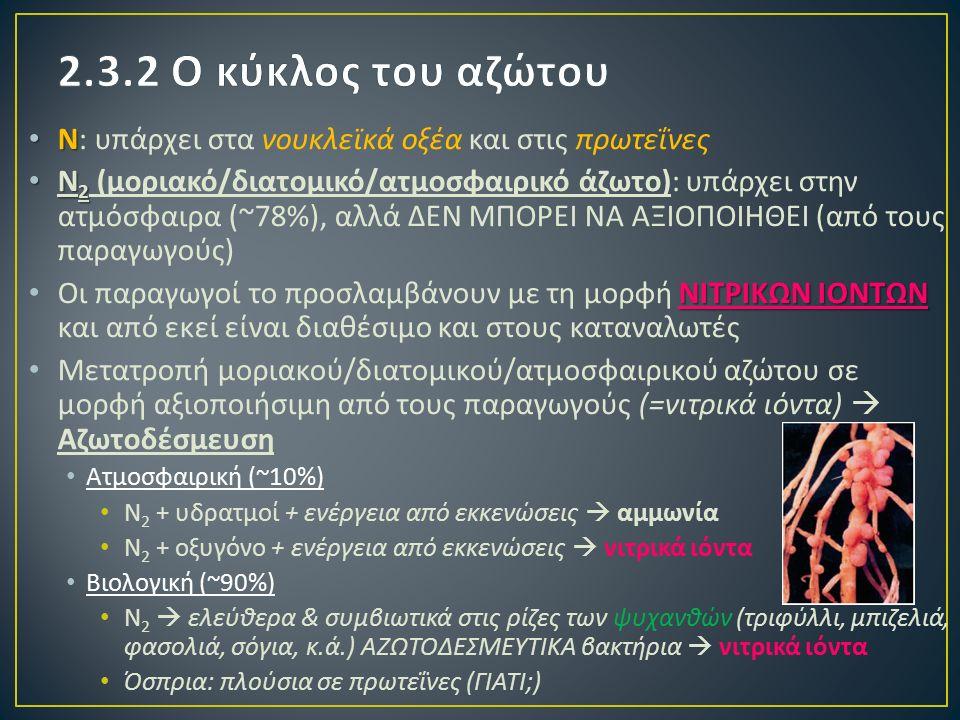 Ν Ν : υπάρχει στα νουκλεϊκά οξέα και στις πρωτεΐνες Ν 2 Ν 2 ( μοριακό / διατομικό / ατμοσφαιρικό άζωτο ): υπάρχει στην ατμόσφαιρα (~78%), αλλά ΔΕΝ ΜΠΟΡΕΙ ΝΑ ΑΞΙΟΠΟΙΗΘΕΙ ( από τους παραγωγούς ) ΝΙΤΡΙΚΩΝ ΙΟΝΤΩΝ Οι παραγωγοί το προσλαμβάνουν με τη μορφή ΝΙΤΡΙΚΩΝ ΙΟΝΤΩΝ και από εκεί είναι διαθέσιμο και στους καταναλωτές Μετατροπή μοριακού / διατομικού / ατμοσφαιρικού αζώτου σε μορφή αξιοποιήσιμη από τους παραγωγούς (= νιτρικά ιόντα )  Αζωτοδέσμευση Ατμοσφαιρική (~10%) Ν 2 + υδρατμοί + ενέργεια από εκκενώσεις  αμμωνία Ν 2 + οξυγόνο + ενέργεια από εκκενώσεις  νιτρικά ιόντα Βιολογική (~90%) Ν 2  ελεύθερα & συμβιωτικά στις ρίζες των ψυχανθών ( τριφύλλι, μπιζελιά, φασολιά, σόγια, κ.