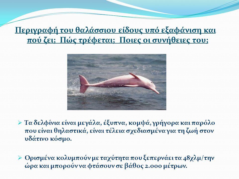 Περιγραφή του θαλάσσιου είδους υπό εξαφάνιση και πού ζει; Πώς τρέφεται; Ποιες οι συνήθειες του;  Τα δελφίνια είναι μεγάλα, έξυπνα, κομψά, γρήγορα και παρόλο που είναι θηλαστικά, είναι τέλεια σχεδιασμένα για τη ζωή στον υδάτινο κόσμο.