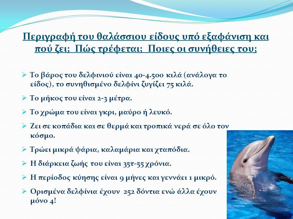 Περιγραφή του θαλάσσιου είδους υπό εξαφάνιση και πού ζει; Πώς τρέφεται; Ποιες οι συνήθειες του;  Το βάρος του δελφινιού είναι 40-4.500 κιλά (ανάλογα το είδος), το συνηθισμένο δελφίνι ζυγίζει 75 κιλά.