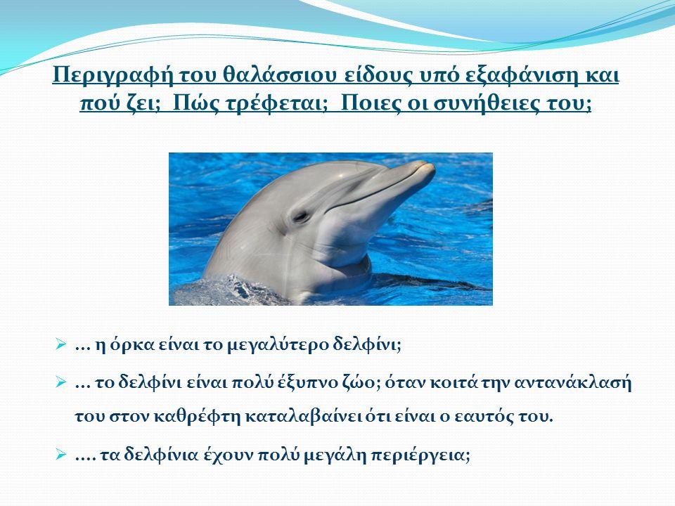 ... η όρκα είναι το μεγαλύτερο δελφίνι; ...