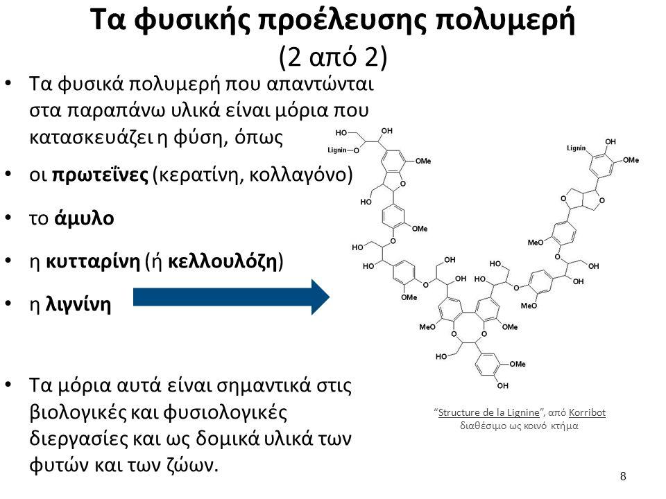 Τα φυσικής προέλευσης πολυμερή (2 από 2) Τα φυσικά πολυμερή που απαντώνται στα παραπάνω υλικά είναι μόρια που κατασκευάζει η φύση, όπως οι πρωτεΐνες (κερατίνη, κολλαγόνο) το άμυλο η κυτταρίνη (ή κελλουλόζη) η λιγνίνη Τα μόρια αυτά είναι σημαντικά στις βιολογικές και φυσιολογικές διεργασίες και ως δομικά υλικά των φυτών και των ζώων.