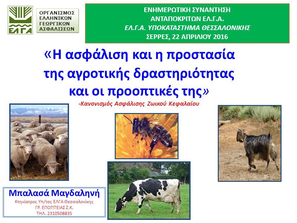 « Η ασφάλιση και η προστασία της αγροτικής δραστηριότητας και οι προοπτικές της» -Κανονισμός Ασφάλισης Ζωικού Κεφαλαίου Μπαλασά Μαγδαληνή Κτηνίατρος Υπ/τος ΕΛΓΑ Θεσσαλονίκης ΓΡ.