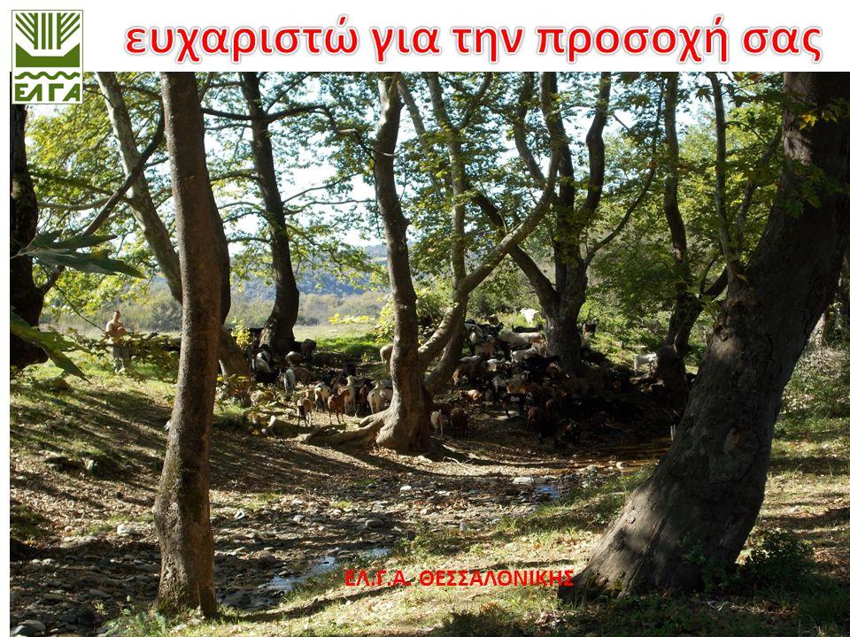 ΟΡΓΑΝΙΣΜΟΣ ΕΛΛΗΝΙΚΩΝ ΓΕΩΡΓΙΚΩΝ ΑΣΦΑΛΙΣΕΩΝ  www.elga.gr  Τηλ.