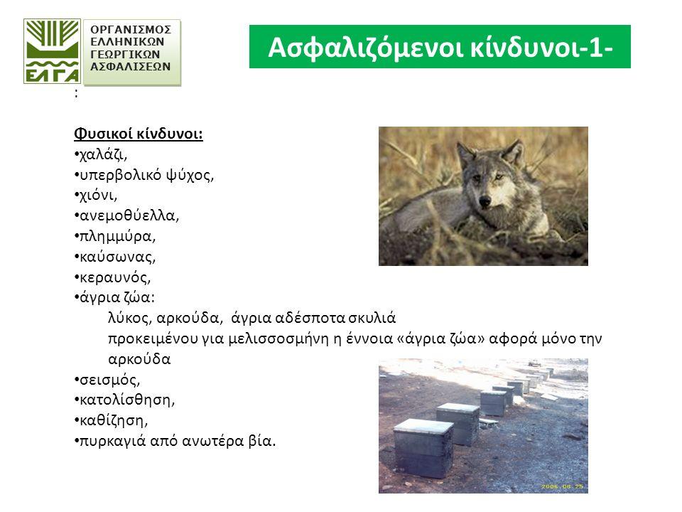 ΟΡΓΑΝΙΣΜΟΣ ΕΛΛΗΝΙΚΩΝ ΓΕΩΡΓΙΚΩΝ ΑΣΦΑΛΙΣΕΩΝ : Φυσικοί κίνδυνοι: χαλάζι, υπερβολικό ψύχος, χιόνι, ανεμοθύελλα, πλημμύρα, καύσωνας, κεραυνός, άγρια ζώα: λύκος, αρκούδα, άγρια αδέσποτα σκυλιά προκειμένου για μελισσοσμήνη η έννοια «άγρια ζώα» αφορά μόνο την αρκούδα σεισμός, κατολίσθηση, καθίζηση, πυρκαγιά από ανωτέρα βία.