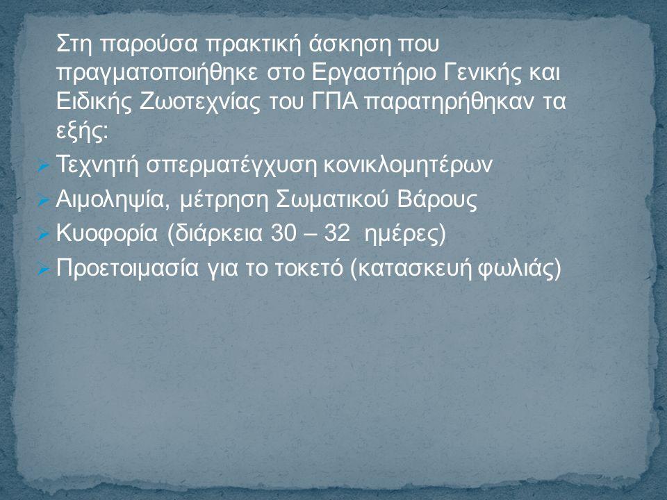 Προσθήκη αντιβίωσης Baytril 5% στις κονικλομητέρες  Προσθήκη αντιβίωσης Neo-Terramycin στα κονικλίδια  Απογαλακτισμός (στις 35 ημέρες)  Διαχωρισμός φύλου  Εκτροφή κονικλιδίων σε κλωβούς  Σήμανση κονικλιδίων με δερματοστιξία (tatoo)  Τοκετός