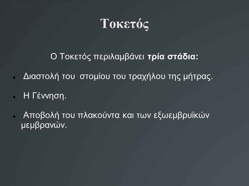 Τοκετός Ο Τοκετός περιλαμβάνει τρία στάδια: Διαστολή του στομίου του τραχήλου της μήτρας. Η Γέννηση. Αποβολή του πλακούντα και των εξωεμβρυϊκών μεμβρα