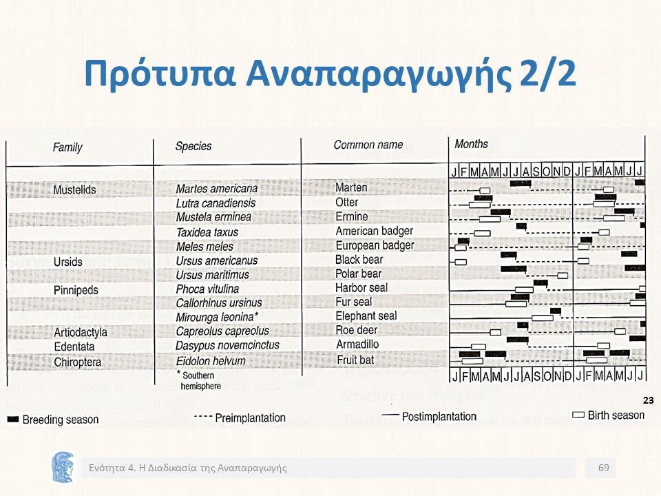 Πρότυπα Αναπαραγωγής 2/2 Ενότητα 4. Η Διαδικασία της Αναπαραγωγής69 2323