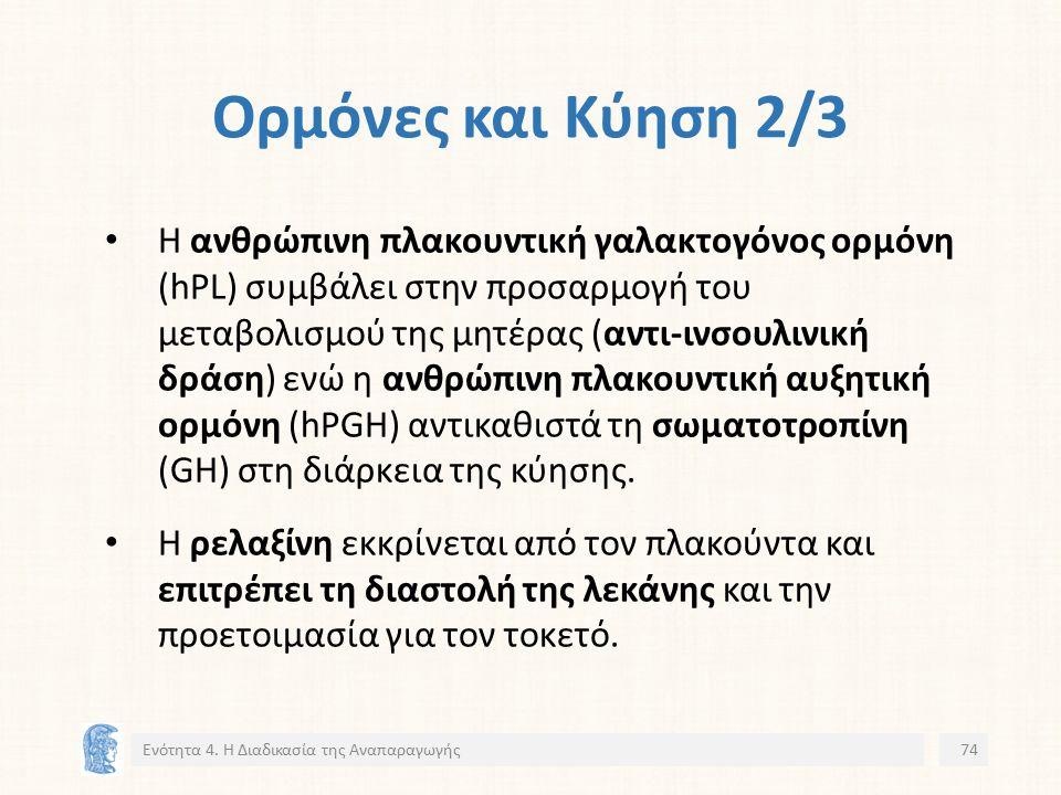 Ορμόνες και Κύηση 2/3 Η ανθρώπινη πλακουντική γαλακτογόνος ορμόνη (hPL) συμβάλει στην προσαρμογή του μεταβολισμού της μητέρας (αντι-ινσουλινική δράση) ενώ η ανθρώπινη πλακουντική αυξητική ορμόνη (hPGH) αντικαθιστά τη σωματοτροπίνη (GH) στη διάρκεια της κύησης.