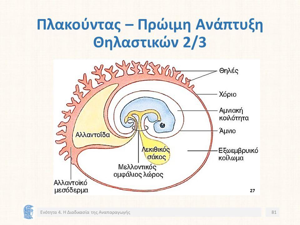 Πλακούντας – Πρώιμη Ανάπτυξη Θηλαστικών 2/3 Ενότητα 4. Η Διαδικασία της Αναπαραγωγής81 2727