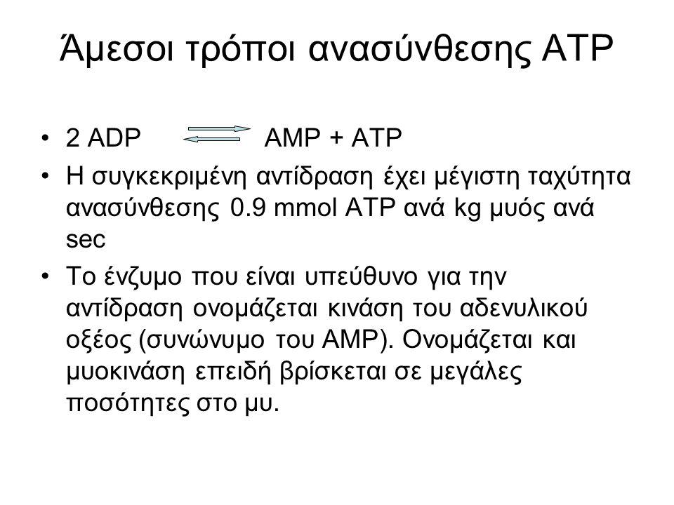 Άμεσοι τρόποι ανασύνθεσης ΑΤΡ 2 ADP AMP + ATP Η συγκεκριμένη αντίδραση έχει μέγιστη ταχύτητα ανασύνθεσης 0.9 mmol ΑΤΡ ανά kg μυός ανά sec To ένζυμο που είναι υπεύθυνο για την αντίδραση ονομάζεται κινάση του αδενυλικού οξέος (συνώνυμο του ΑΜΡ).