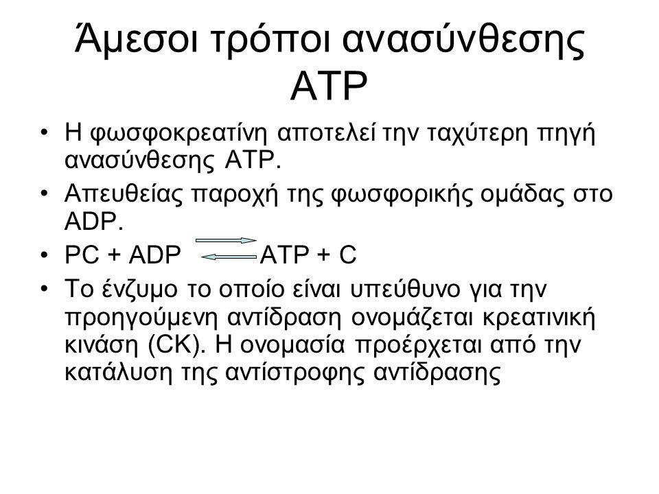 Άμεσοι τρόποι ανασύνθεσης ΑΤΡ Η φωσφοκρεατίνη αποτελεί την ταχύτερη πηγή ανασύνθεσης ΑΤΡ.