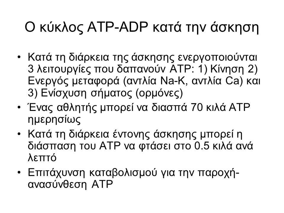 Ο κύκλος ΑΤΡ-ADP Η επιτάχυνση του κύκλου αποτελεί βασικό στοιχείο στο μεταβολισμό κατά τη διάρκεια της άσκησης και γι' αυτό αποτελεί το έμβλημα πολλών βιοχημικών συνεδρίων