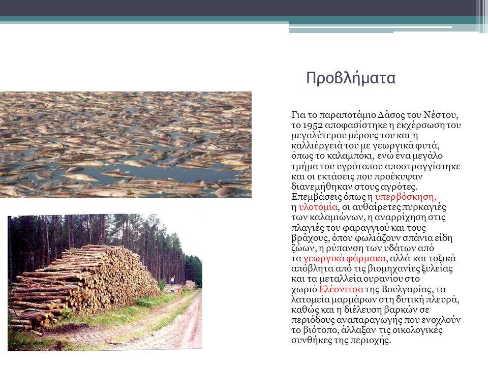 Προβλήματα Για το παραποτάμιο Δάσος του Νέστου, το 1952 αποφασίστηκε η εκχέρσωση του μεγαλύτερου μέρους του και η καλλιέργειά του με γεωργικά φυτά, όπως το καλαμπόκι, ενώ ένα μεγάλο τμήμα του υγρότοπου αποστραγγίστηκε και οι εκτάσεις που προέκυψαν διανεμήθηκαν στους αγρότες.