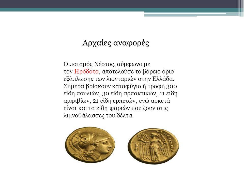 Αρχαίες αναφορές Ο ποταμός Νέστος, σύμφωνα με τον Ηρόδοτο, αποτελούσε το βόρειο όριο εξάπλωσης των λιονταριών στην Ελλάδα. Σήμερα βρίσκουν καταφύγιο ή