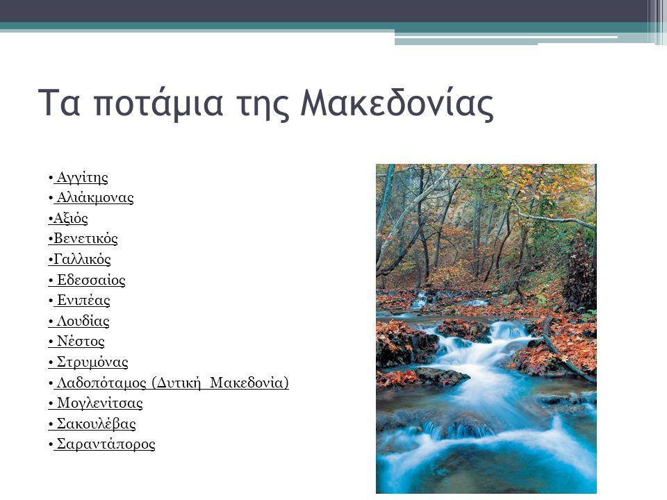Τα ποτάμια της Μακεδονίας Αγγίτης Αλιάκμονας Αξιός Βενετικός Γαλλικός Εδεσσαίος Ενιπέας Λουδίας Νέστος Στρυμόνας Λαδοπόταμος (Δυτική Μακεδονία) Μογλεν