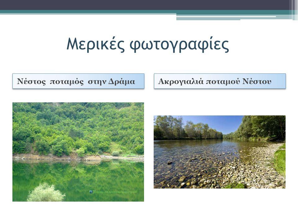 Μερικές φωτογραφίες Νέστος ποταμός στην Δράμα Ακρογιαλιά ποταμού Νέστου