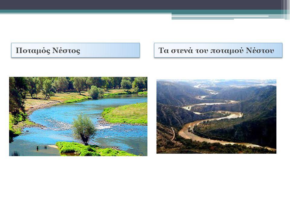 Ποταμός Νέστος Τα στενά του ποταμού Νέστου