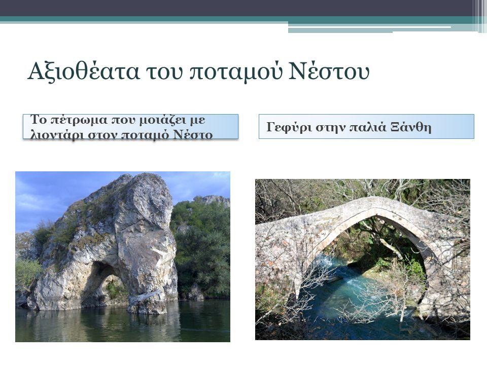 Το πέτρωμα που μοιάζει με λιοντάρι στον ποταμό Νέστο Γεφύρι στην παλιά Ξάνθη Αξιοθέατα του ποταμού Νέστου